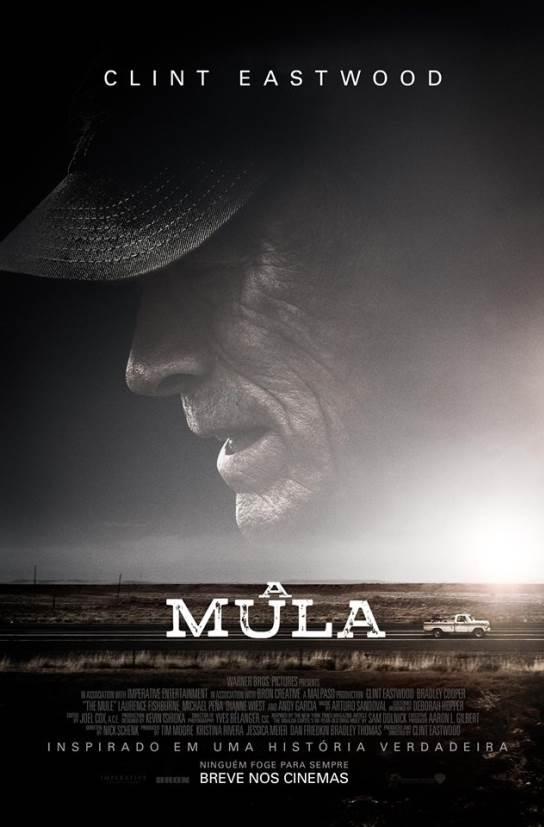 https://www.plazacasaforte.com.br/cinema/A MULA